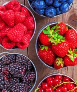 Summer Fruits Paint by numbers