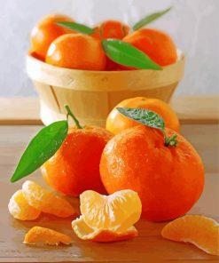 Sweet Mandarine Fruit Paint by numbers