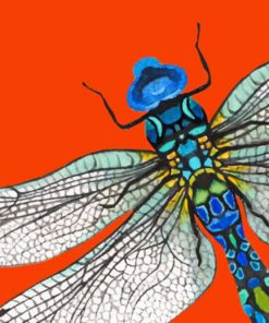 abstract-dragonfly-paint-by-numbers