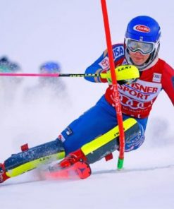 Aesthetic Alpine Skiing Paint by numbers