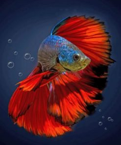 Aesthetic Betta Fish Paint by numbers