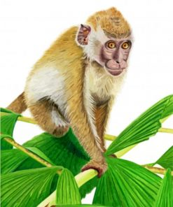 aesthetic-macaque-paint-by-numbers