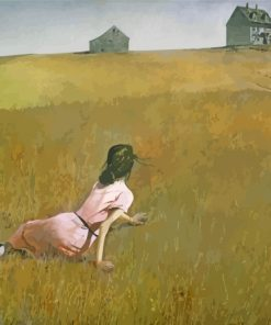 andrew-wyeth-girl-in-field-paint-by-numbers