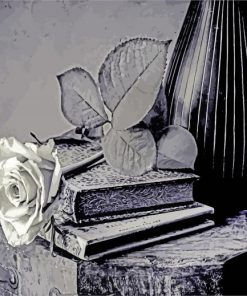 black-and-white-rose-flower-paint-by-number