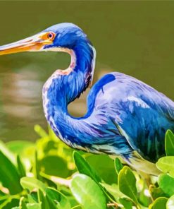 blue-heron-paint-by-numbers