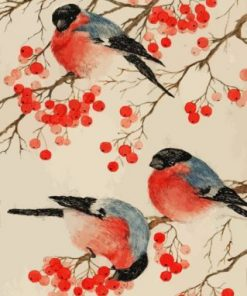 Bullfinch Birds Paint by numbers