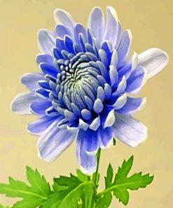 chrysanthemum-flower-paint-by-number