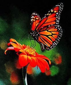 colorful-butterfly-on-flower-paint-by-numbers