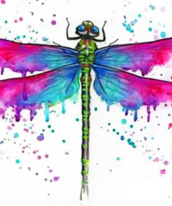 colorful-dragonfly-paint-by-numbers