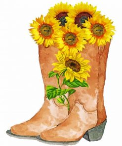 cowboy-boots-with-flowers-paint-by-numbers
