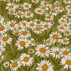 Daisy Field Illustration paint by numbers