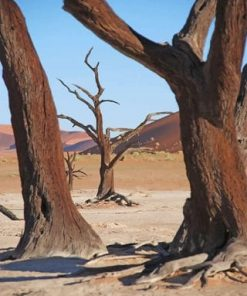 Dead Tree Desert paint by numbers