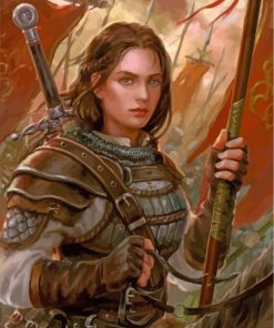 Fantasy Female Warrior Paint by numbers