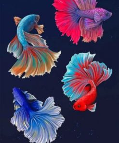 Betta Fishes Vector paint by numbers