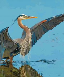 great-blue-heron-bird-paint-by-number