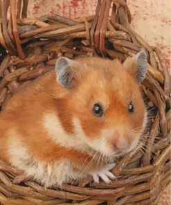 hamster--poster-paint-by-numbers