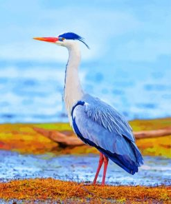 heron-bird-paint-by-number