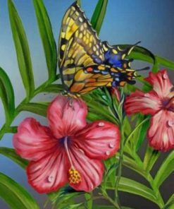 Hibiscus Butterfly Paint by numbers