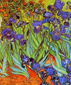 Irises Vincent Van Gogh paint by numbers