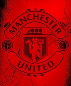 Manchester United Paint by numbers
