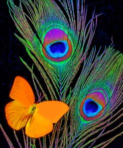 peacock-feathers-and-butterfly-paint-by-numbers