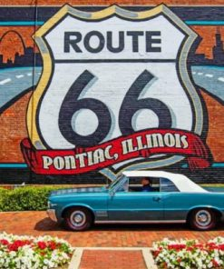 Pontiac Near The Flowers And Graffiti Paint by numbers