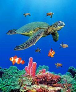 sea-turtles-paint-by-number