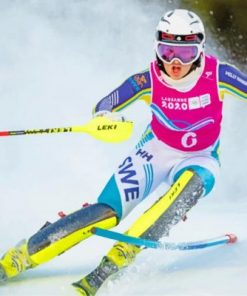 Skiing Olympic Games Paint by numbers