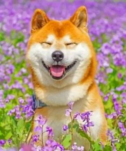 Smiling Shiba Inu Paint by numbers