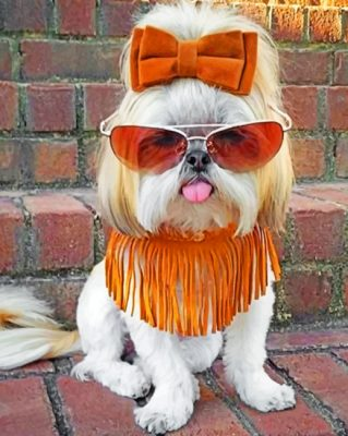 stylish-shih-tzu-paint-by-number