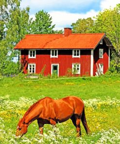 sweden-farm-paint-by-number