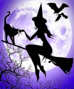 Witch And Her Cat Paint by numbers