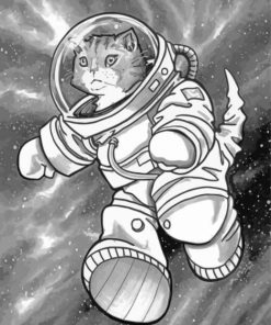 Black and White Astronaut Cat paint by number