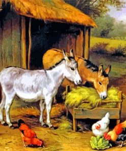 Chickens And Donkeys Feeding Outside A Barn Paint by numbers