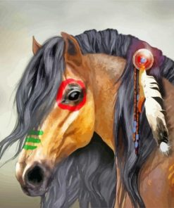 Indian Horse paint by numbers