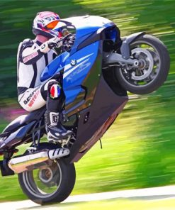 Motocross-BMW-K1300S-paint-by-number