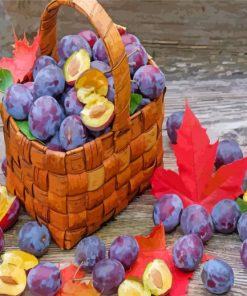 Plums Fruit Basket paint by numbers