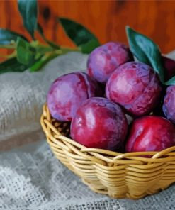 Plums Fruit In Basket paint by number