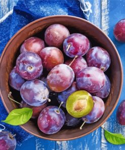 Plums Fruit paint by number