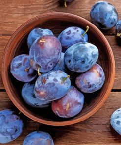 Plums In Bowl paint by number