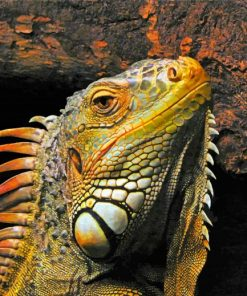 aesthetic-iguana-paint-by-numbers
