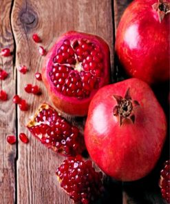 Aesthetic Pomegranate paint by numbers