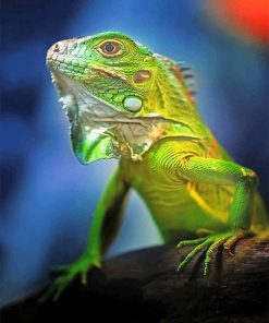 beautiful-green-iguana-adult-paint-by-numbers