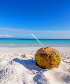 coconut-drink-on-beach-paint-by-number