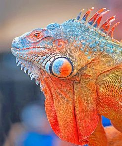 colorful-iguana-adult-paint-by-numbers