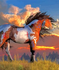 indian war horse paint by number