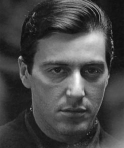 Michael Corleone paint by numbers