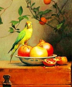 Pomegranate And Parrot paint by numbers