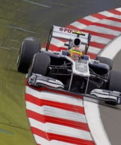 Pastor Maldonado Formula One Paint by numbers