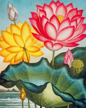 water-lily-vintage-art-paint-by-numbers